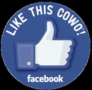 Pagina Facebook Rovigo